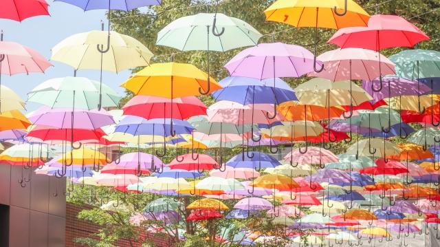 日傘色風水