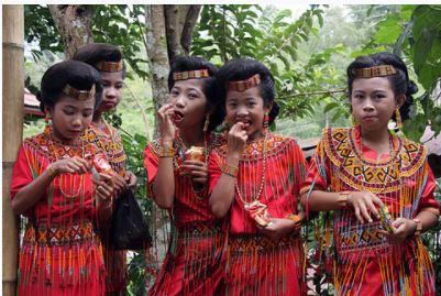 トラジャ族